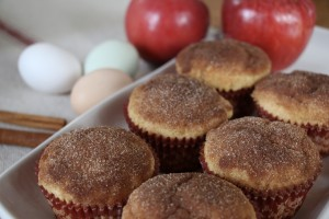 Homemade Applesauce Muffins